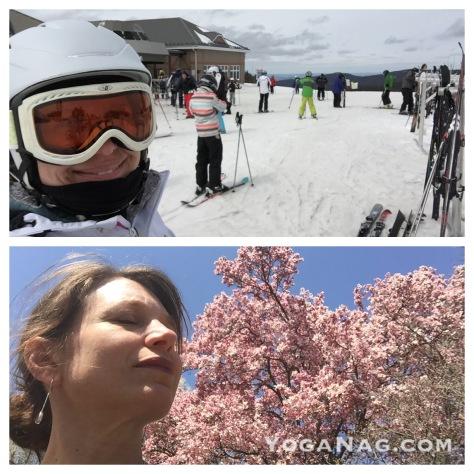 snow to sun